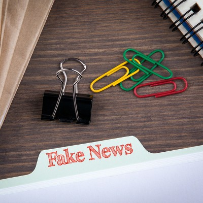 You Don't Want Decision-Makers Reading Disinformation